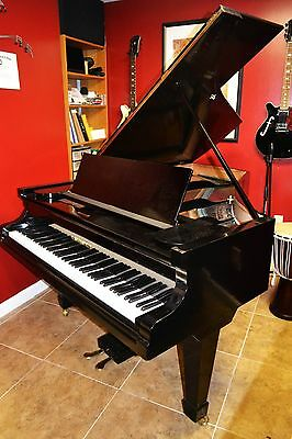 Bechstein   grand piano and matching  Steinway  adjustable  bench.Watch Video!