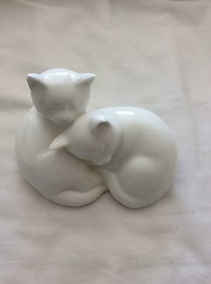 Royal Doulton Images Of Nature - Sleepy Heads - Two White Cats