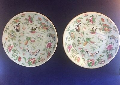 Pair Of 19th C Celadon Canton Chinese Enamel Decorative Plates With Seal Mark
