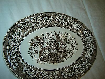 """Wedgwood Aesthetic Movement Beatrice Antique small oval platter 9""""X 5"""" England"""