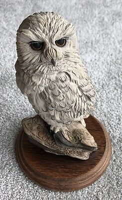 Country Artist  Snowy Owl