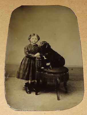 Antique Tintype Young Girl Child Posing w/ Black Dog on Chair