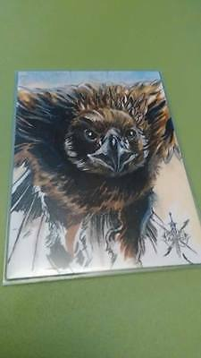 The Hobbit Battle of Five Armies Sketch Card Eagles Ken Gordon Cryptozoic 2016
