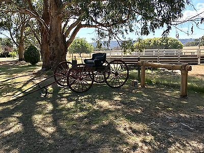 Authentic Antique Horse Drawn Vehicle - Buggy