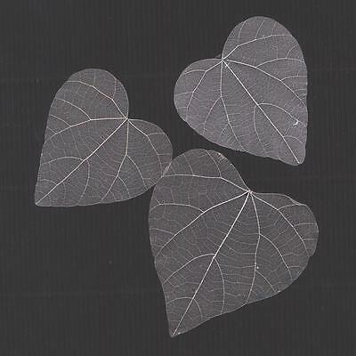 90 x 5cm SILVER dried SKELETON Leaves Embellishment Scrapbook Card Paper Craft