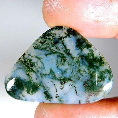 24.90cts NATURAL DESIGNER GREEN SEAWEED MOSS AGATE FANCY CABOCHON TOP GEMSTONE