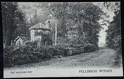 Old Postcard - The Mustard Pot, Fellbrigg Woods, Norfolk