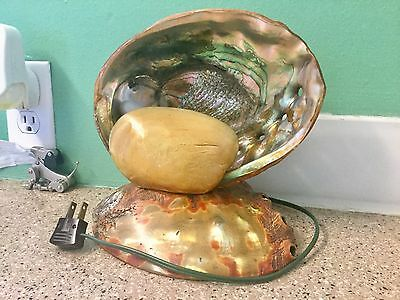 Vintage Abalone Pearl Sea Shell TV Light, Tiki Night Lamp,  FREE SHIPPING