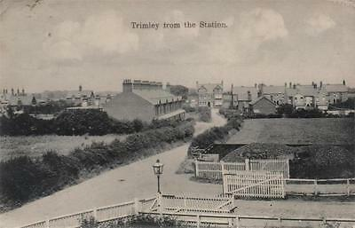 Trimley From The Station Suffolk 1908