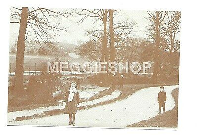 LONDON/KENT: BROMLEY: BESIDE THE RAVENSBOURNE MARTINS HILL c1900 REPRO POSTCARD