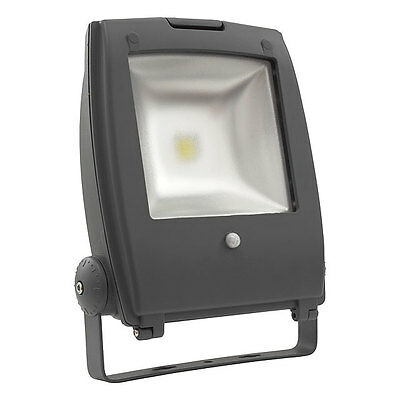 LED MCOB floodlight with a motion detector RINDO MCOB-50W-GM SE