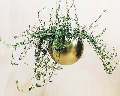 Brass Gold Hanging Planter Indoor Outdoor Pot Metal Hanger Terrarium Garden