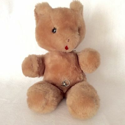Vintage Eden Toys Wind Up Musical Bear With Tag 1976 Felt Tongue Plush