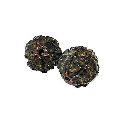 Antique rudraksha beads 6 mukhi facets.  (1505)