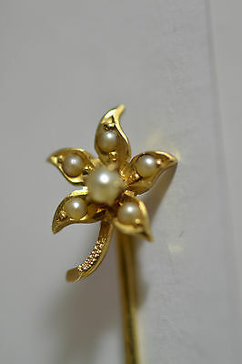 Antique Victorian 10k Y Gold Stick Pin Star Flower 6 seed Pearls 2 1/8''