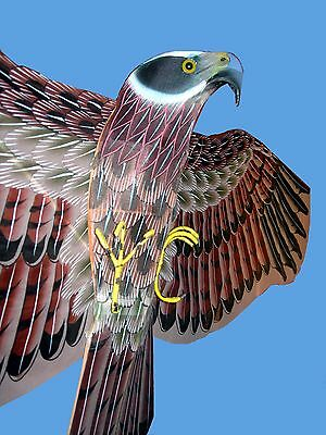 150cm 3D Hand-painted Eagle Bamboo Silk Chinese Kite/Crafts/Collectables/Gift