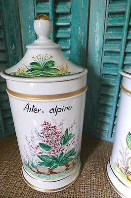 Antique Porcelain Apothecary Pharmacy Lg Jar Canister French HandPainted RARE