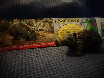 Yowies Series 2 UK YOWIES, * NORTHERN HAIRY NOSED WOMBAT + PAPERS