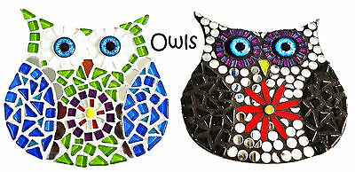 Owl Mosaic Kitsets - Choose your Owl