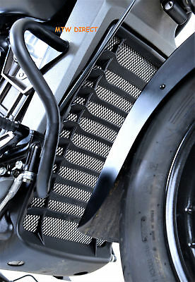 R&G RACING RADIATOR GUARD Indian Motorcycles Scout (2015)