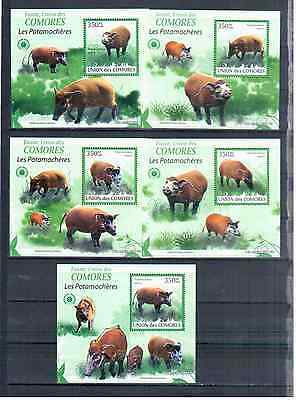 Cpmoros 6 Blocks  Minerals 2011  Mnh