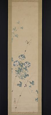"""JAPANESE HANGING SCROLL ART Painting """"Morning glory and Dragon fly""""  #E6024"""
