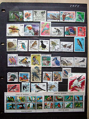 Birds - Collection Of All Different Bird Stamps With Some High Val Sth Africa