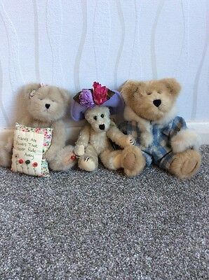 Group Of Boyds Bears