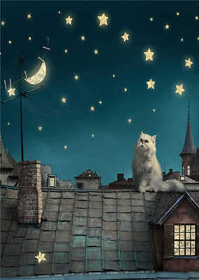Cat Photo Backdrops for Baby Children Photography Background House 5X7FT Vinyl