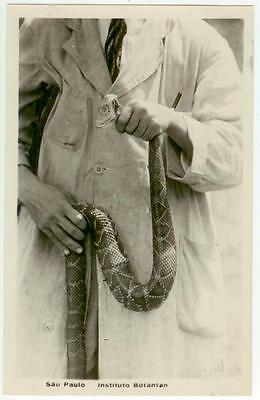 c1930 Sao Paolo Brazil Instituto Butantan researcher holding snake Real Photo