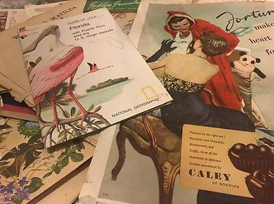 Bulk Collection Of Paper Ephemera - Craft Lot