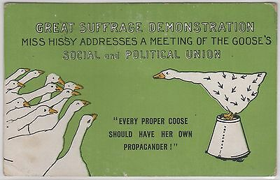 Political: Suffragette interest: Comic Geese Colour Printed Postcard