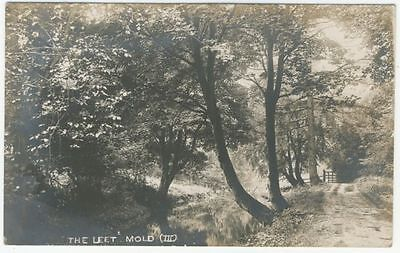 MOLD postcard - THE LEET - posted 1916