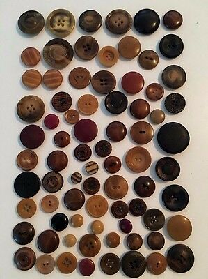 ⭐️  Lot Of 75+ Buttons Vegetable Ivory/~Tagua Nut~Pressed,carved,dyed  ⭐️