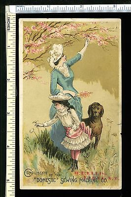 DOMESTIC SEWING MACHINE CO. Victorian Trade Card; Lady & Girl Pick Flowers w/dog