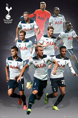 Tottenham Hotspur FC Poster - PLAYERS 16/17 - New Spurs Football poster SP1398