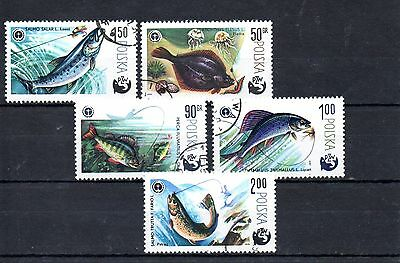 set of 5 used angling/fishing themed stamps from poland