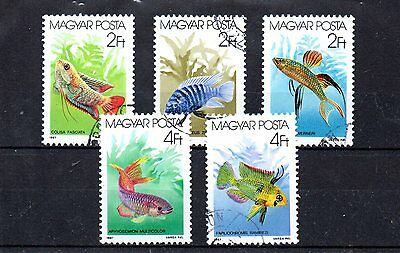 set of 5 used tropical fish themed stamps