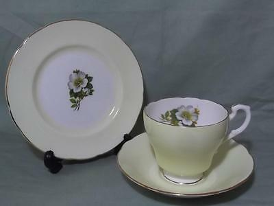 Vintage Royal Standard Harlequin Trio Tea Cup, Saucer & Side Plate Pastel Yellow