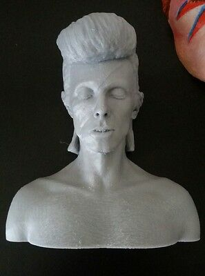 David Bowie Aladdin Sane plastic model