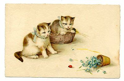 vintage cat postcard cats spill pot of forget me not flowers ladybird ladybug