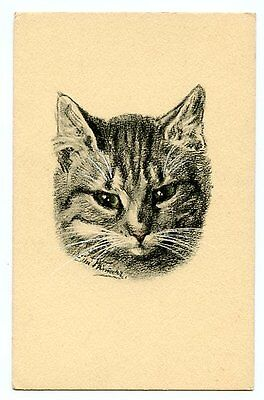 vintage cat postcard beautiful art head portrait green eyed tabby cat