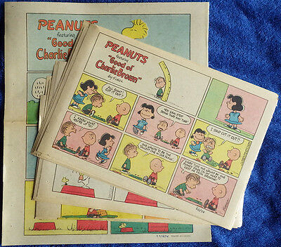 Peanuts 1974 52 Sunday comic strips - Complete - Charles Schulz