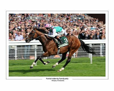 Frankel Ridden By Tom Queally 27 (Horse Racing) Photo Prints And Mugs