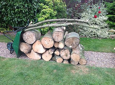 Large Pile Of Softwood Logs.....