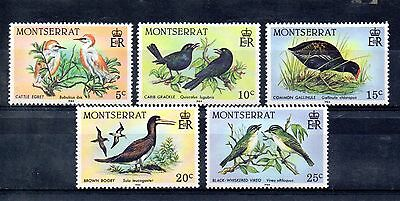 set of 5 mint bird themed stamps from montserrat