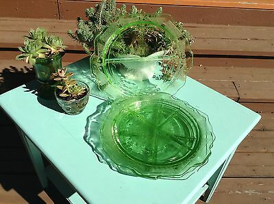 Set of 4 Green Grill/Divided Depression Plates Princess Pattern
