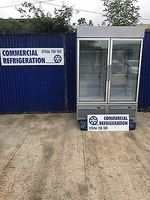 ISA 2 Door Upright Display Freezer Frozen Fridge Ice Cream Commercial Shop