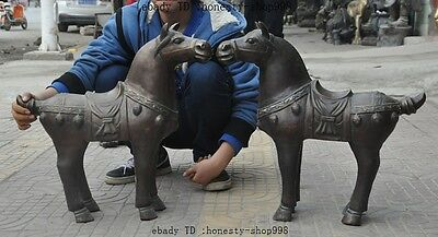 "24""Old Chinese fengshui Bronze Success Zodiac Year Tang Horse animal Statue Pair"