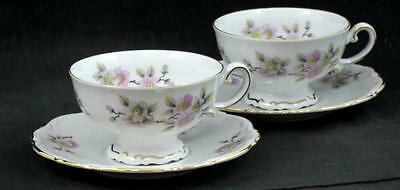 Mitterteich SPRINGTIME 2 Cup & Saucer Sets GREAT CONDITION